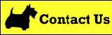 contactusbutton